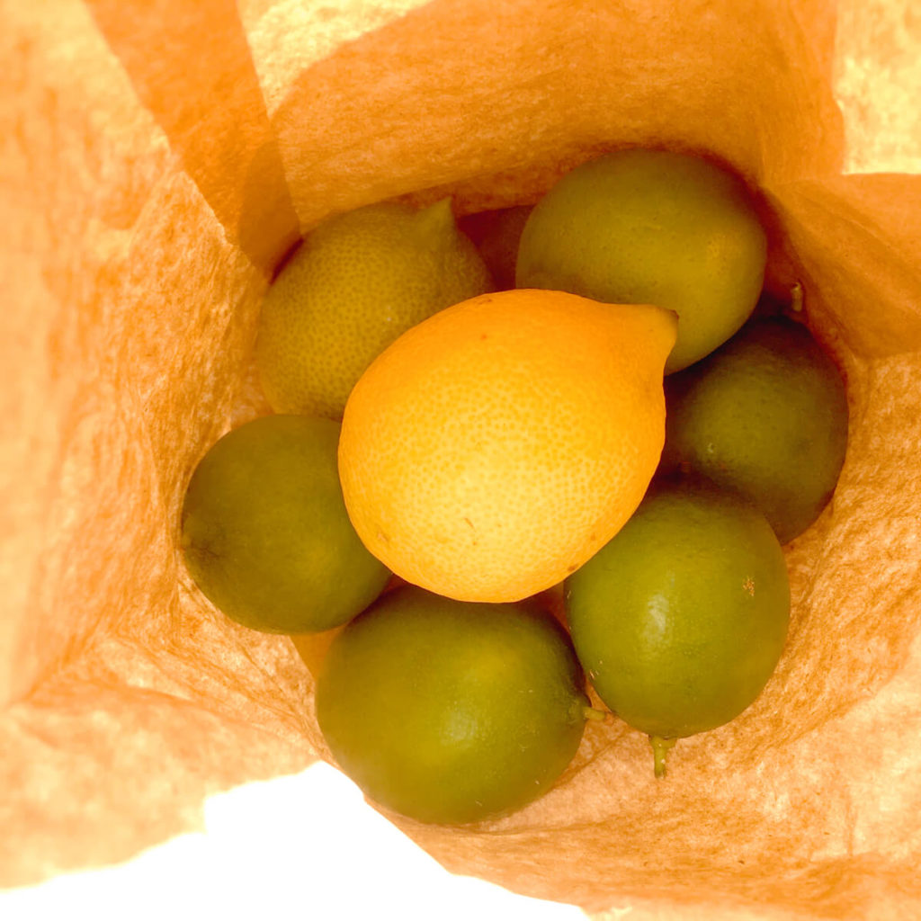 citrus fruit in a bag