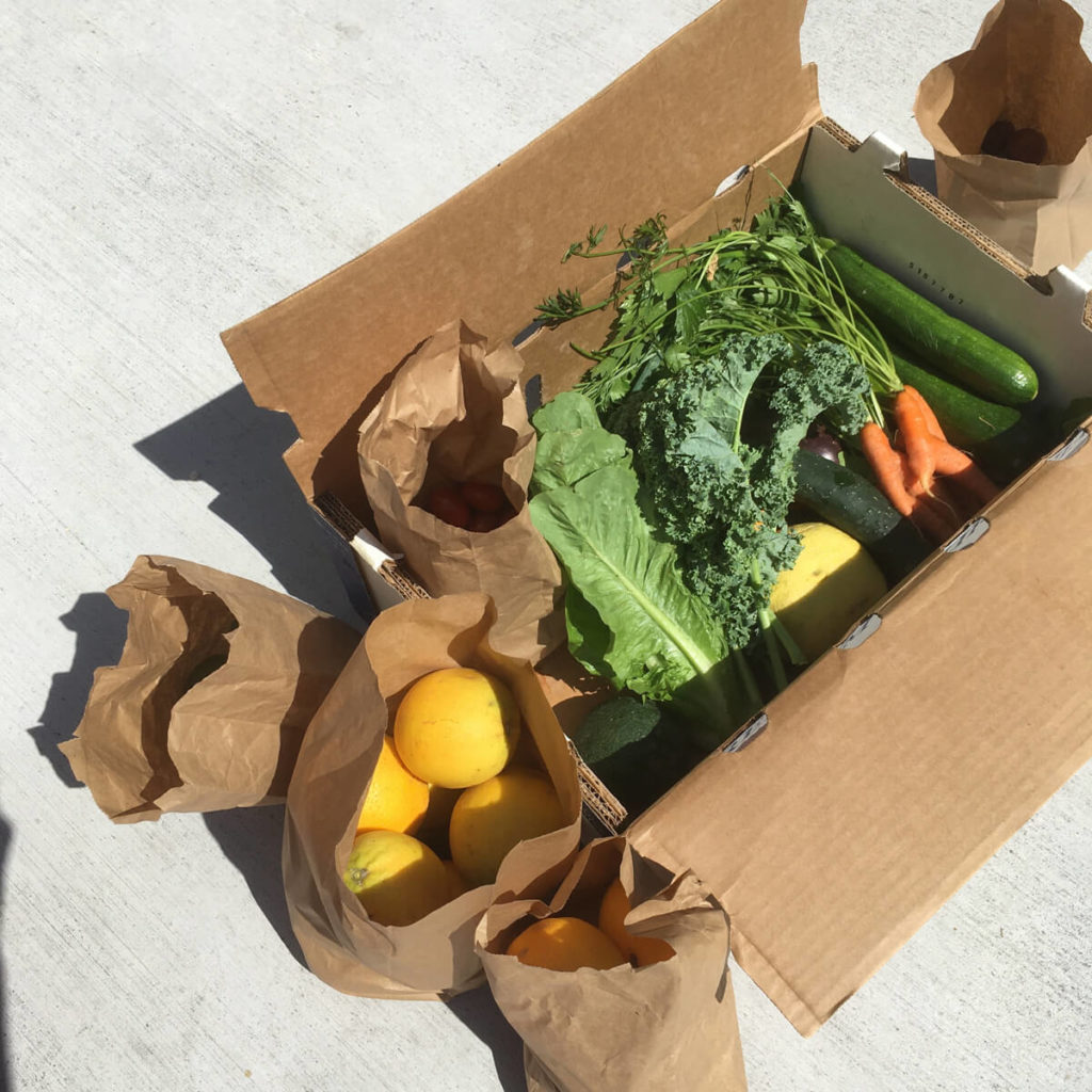 csa box from farmer steve filled with yummy veggies